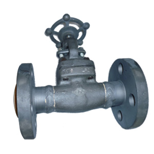 A350 LF2 Forged Steel Flanged Ends Globe Valves, 600 LB